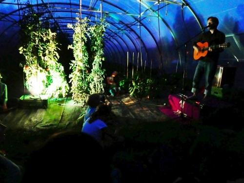 Musik im Tomatenhaus: Das Garten-Ambiente des Radieslihofs bietet eine ungewöhnliche Kulisse für das kulturelle Sommerprogramm. (Bild: zvg)