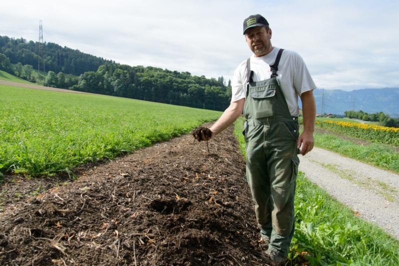 Der Kompost ersetzt einen guten Teil Kunstdünger.