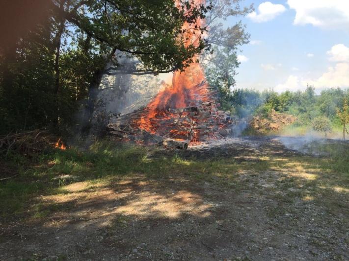 Oberhalb der Reithalle verursachte der Brand eines Holzhaufens einen kleinen Waldbrand. (Bilder: Feuerwehr Münsingen, zvg)