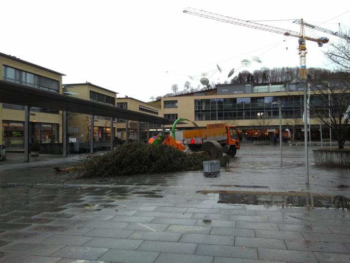 Kurzer Prozess: Der Worber Tannenbaum hielt dem Sturm nicht Stand und wurde kurz darauf an Ort und Stelle geschreddert und weggeräumt. (Bild: Isabelle Berger)