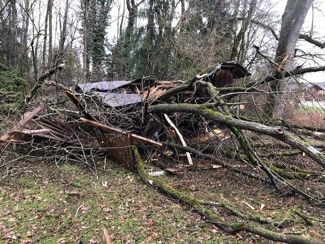 ...wurden Bäume und Häuser nicht verschont, ...