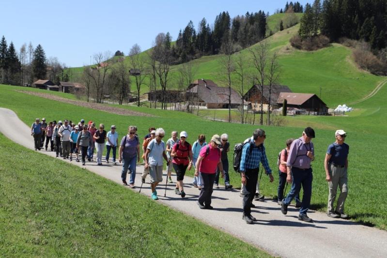 Die grosse Wandergruppe kurz nach Jassbach. (Bilder: Willi Blaser)
