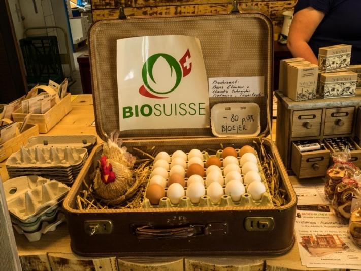 Bio Eier von Clauser + Schneider in Tägertschi bei Zäzibiene
