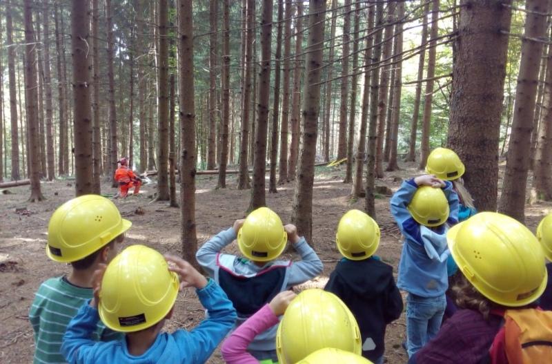 Ferienspass Oktober 2017: Die Kinder durften mit den Förstern raus in den Wald. (Bild: jugendarbeit-worb.ch)
