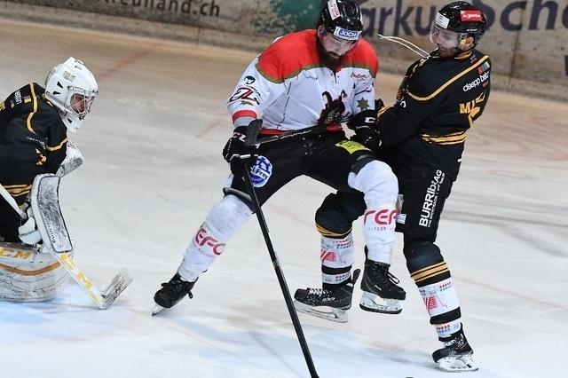 1. eishockey liga