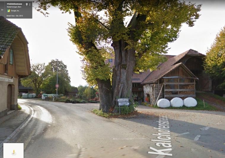Die 300-jährige Linde an der Kreuzung Dorf-/Kalchofenstrasse prägte bisher das Dorfbild. (Bild: Google Maps)
