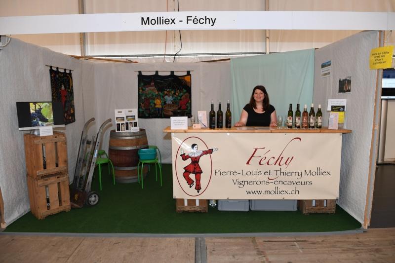 Molliex Weinkeller mit Salomé Molliex.