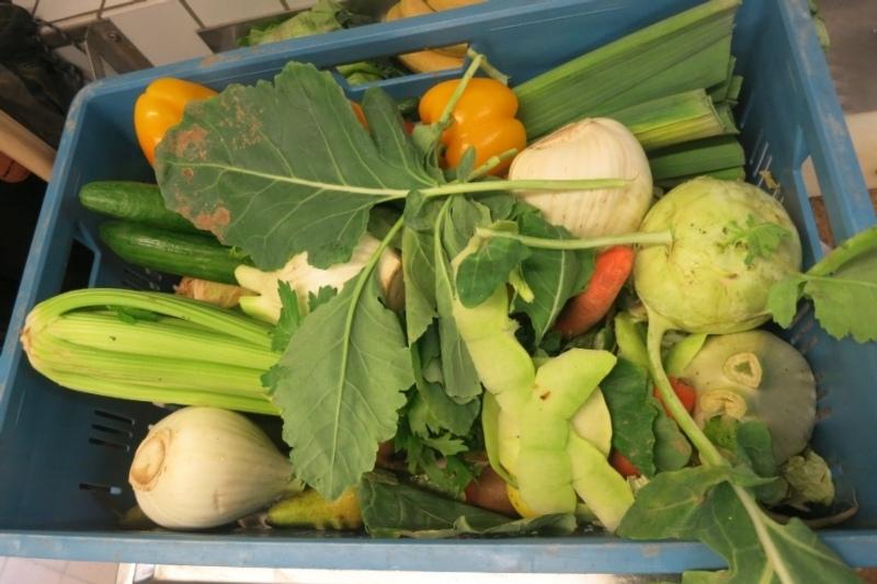 Unsere Schweine und Enten lieben jegliche Art von Gemüse und Obst. Allerdings sollte es nicht verschimmelt sein.